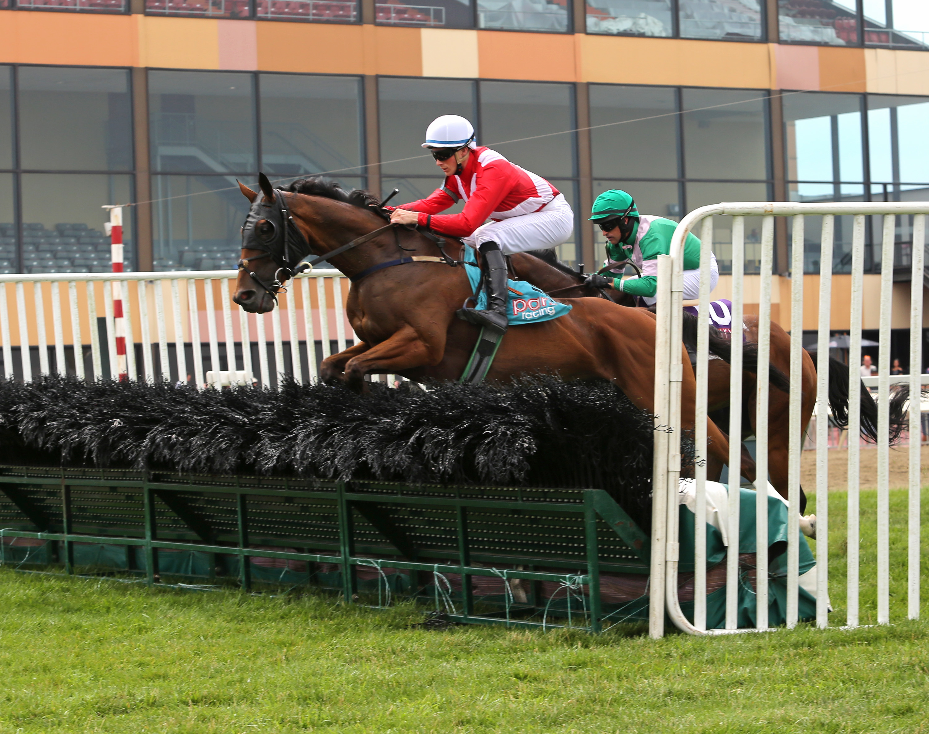 Jump rider Willie McCarthy injured in Tuesday spill at ...
